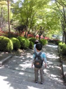 20120522_2264194
